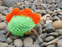 TORTOISE JUMPERS