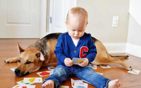 Baby Boy and Dog best friends