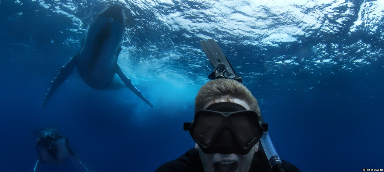 Lucky diver Craig Parry managed to snap a selfie with the humpback whales