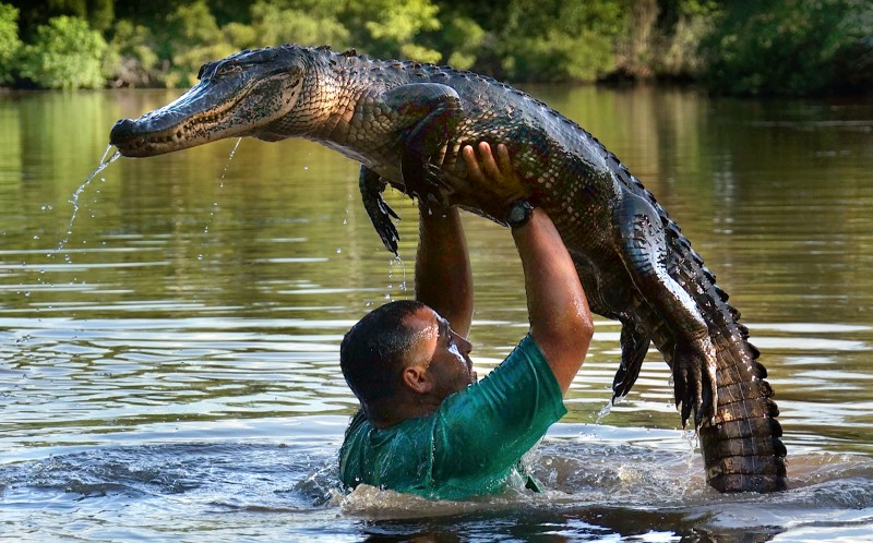 In a nod to the famous lift from Dirty Dancing, casually plucks a gator out of the water and hoists it above his head