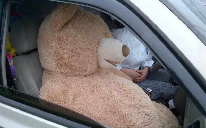 TEDDY IN PASSENGER SEAT