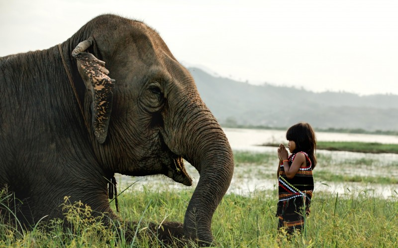 Girl best friends with elephant