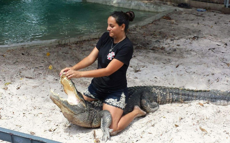 "Martha said: ""What fascinates me most about aligators is how smart they are."""