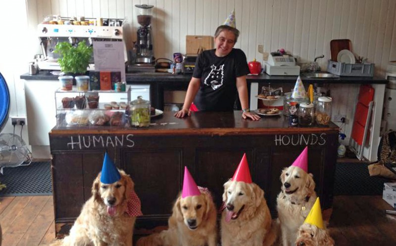 Scooby's Boutique Coffee Bar caters exclusively for our four-legged-friends