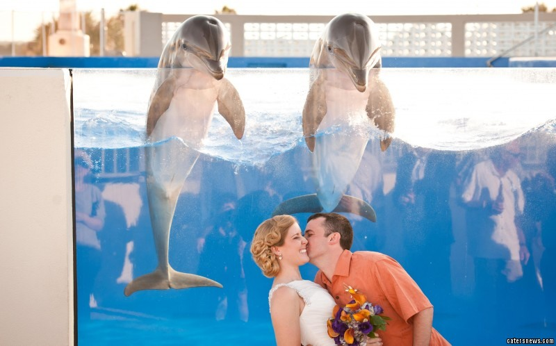Alexis and Steve Espey tied the knot at Marineland Dolphin Adventure in St. Augustine