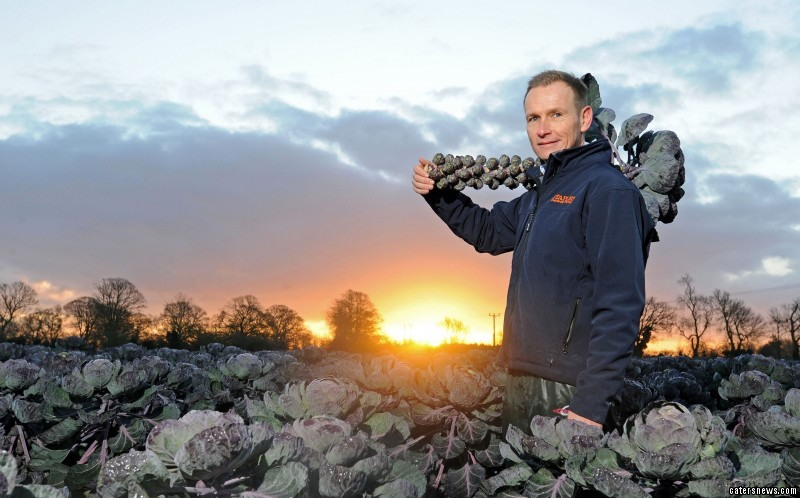 Scenes at Staples Vegetables Ltd as dawn broke over the sprout field