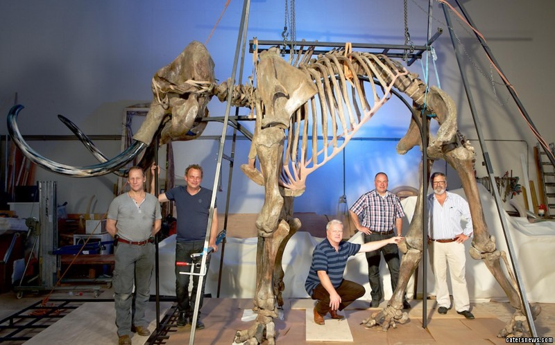 Archaeologists, salvagers and palaeontologists trawled the waters off the east coast of Britain
