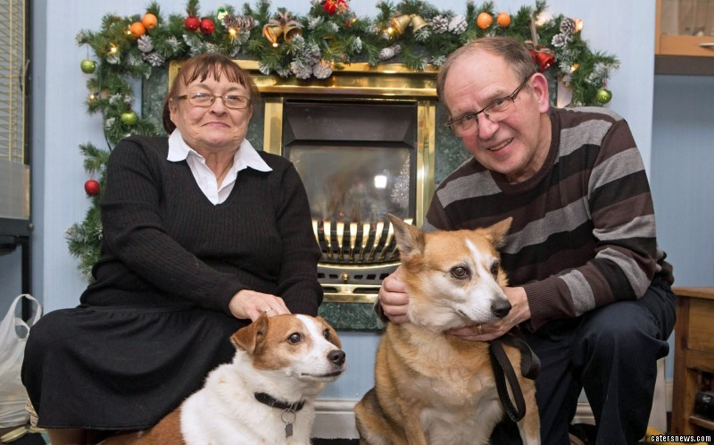 Sophie was facing her tenth festive season in a dog shelter