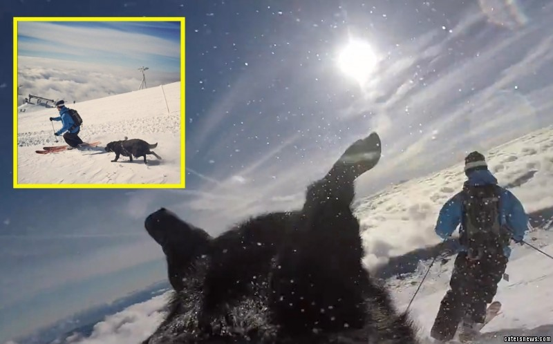 The GoPro camera captured Rosie taking in the views before she takes off down the slope