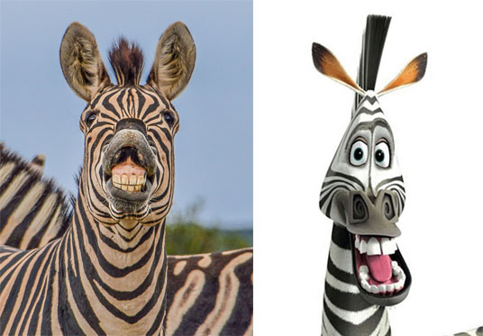 Marty the Zebra from the film Madagascar is known for his toothy grin