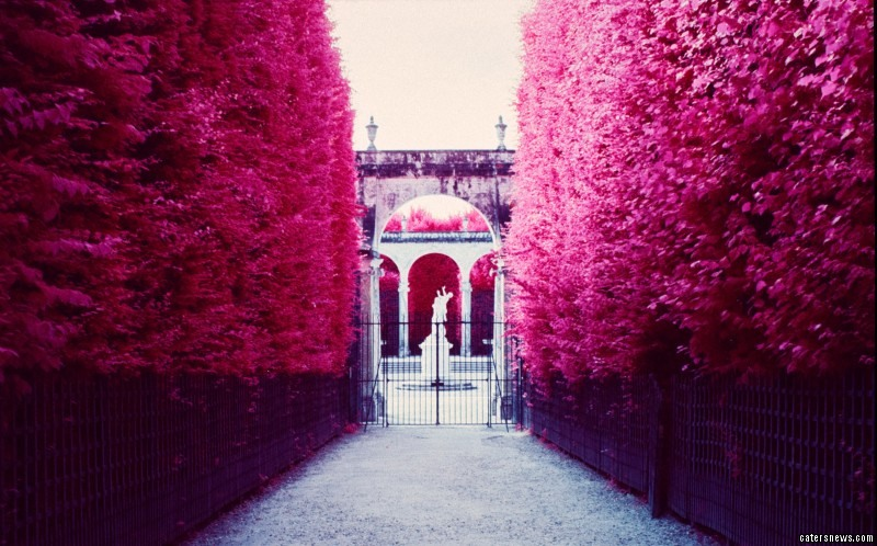 Infrared Paris