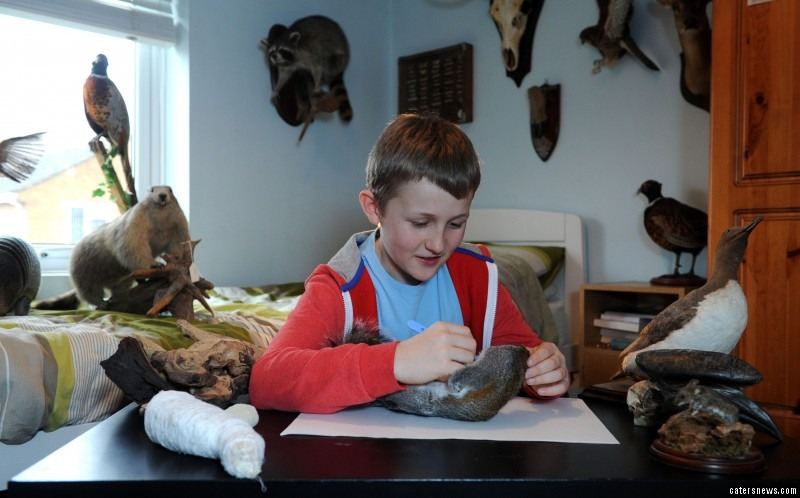 The curious youngster became fascinated with the craft, after reading about taxidermy online