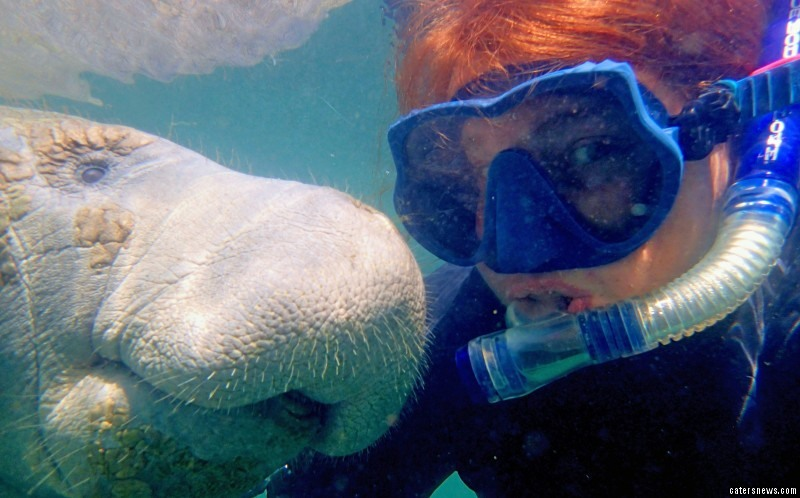 Rebecca didn't even realise that manatees frequent the springs around Crystal River