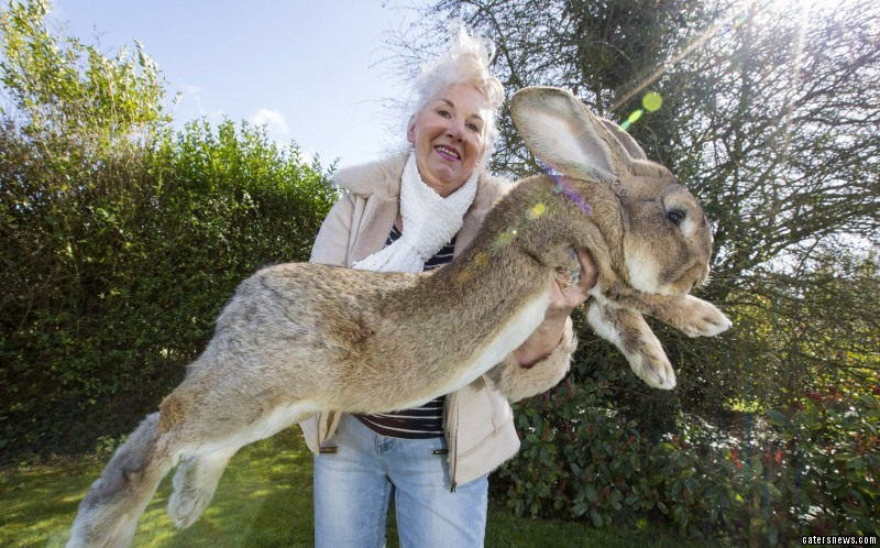 Annette with Jeff the Rabbit