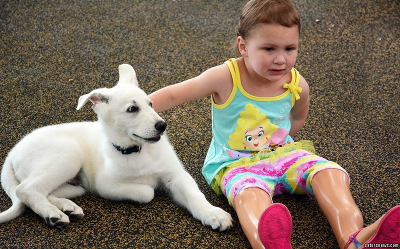 """When Sapphyre, from Tennessee, USA, first saw the pup she said: """"He's just like me."""""""