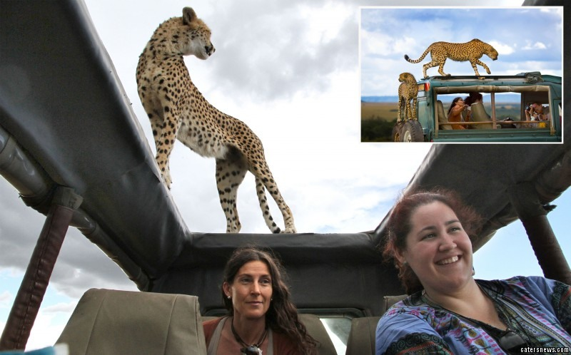 Clara Vela took a selfie with a cheetah while on safari with her friends