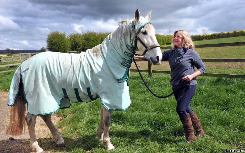 Meet Andalusian Chanquette - the horse who's allergic to grass