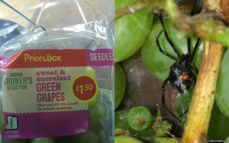 Hanna Horsley found a deadly Black Widow spider in a bunch of grapes