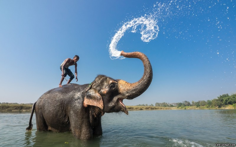 The man known as a mahout has been riding and caring for the elephant since he was a boy and as these stunning images show the pair have formed an incredible bond