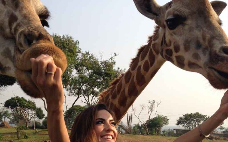 Marlina with some giraffes