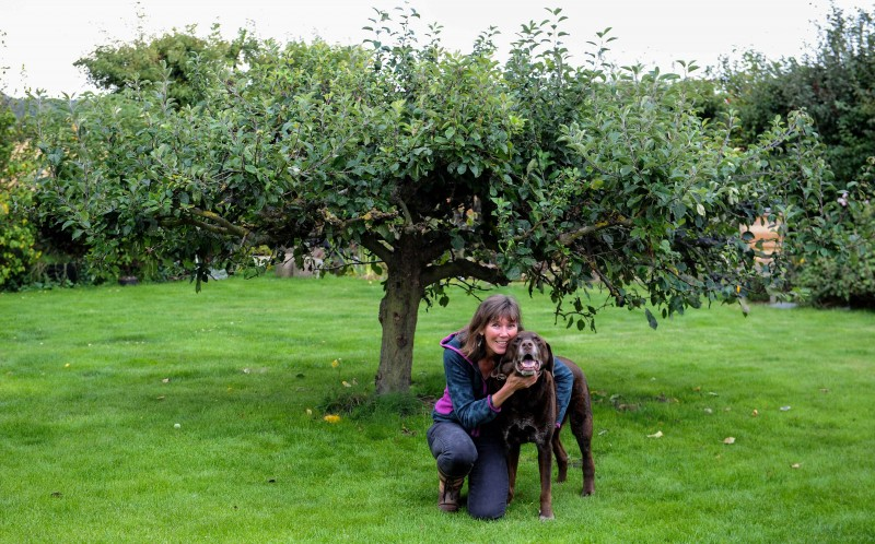 Sue Kirk with Rolo in front of the apple tree that Rolo will shake to steal apples