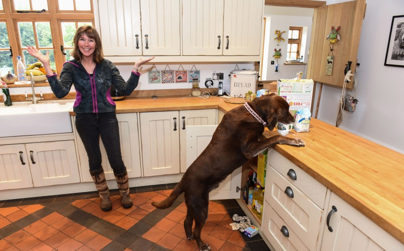 Any food left on the work top is fair game for Rolo, as he climbs up to get food as Sue Kirk looks on