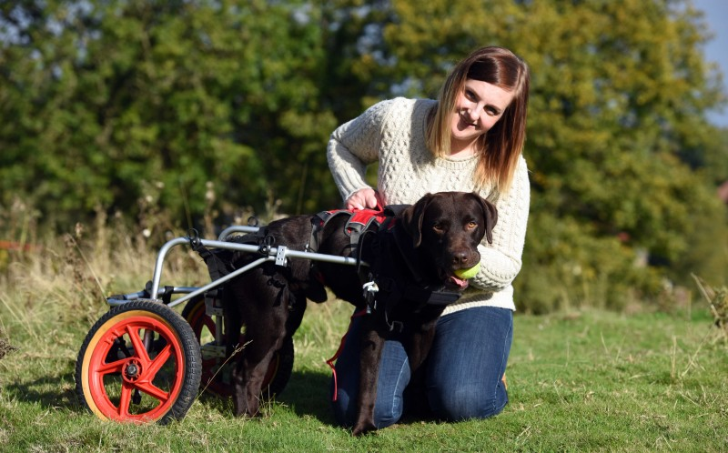 LENNY THE LABRADOR WITH HIS OWNER VICTORIA MARCH