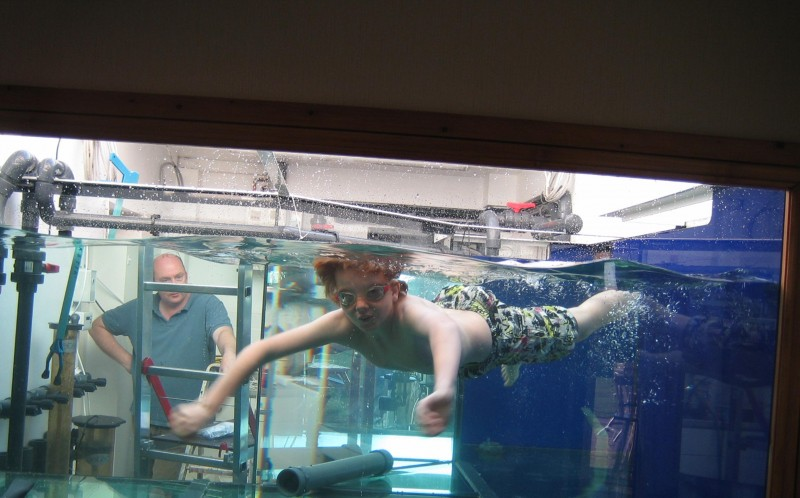 Martin and Kay's son, James, having a swim in the tank