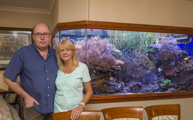 Martin and Kay with the fish tank in the living room