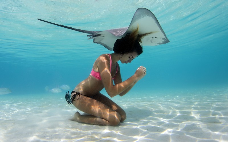 A beautiful model swimming with a stingray in Tahiti