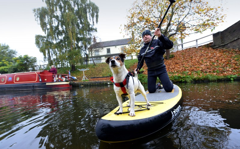Skipper the adventure dog with his owner Jon Taylor on the canal in Wheaton Aston