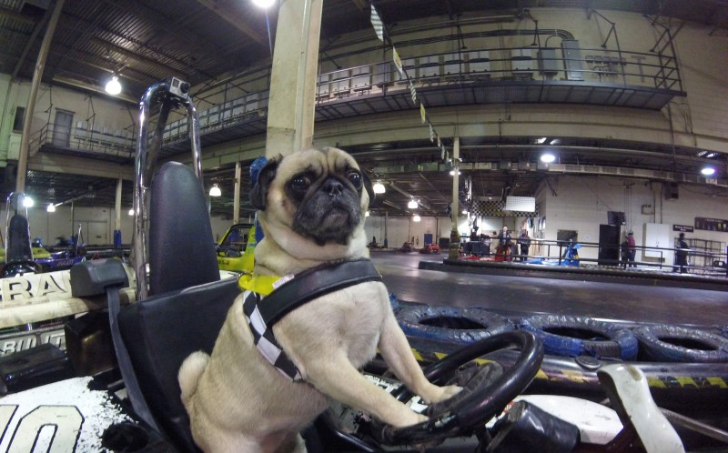 Atom driving a vehicle