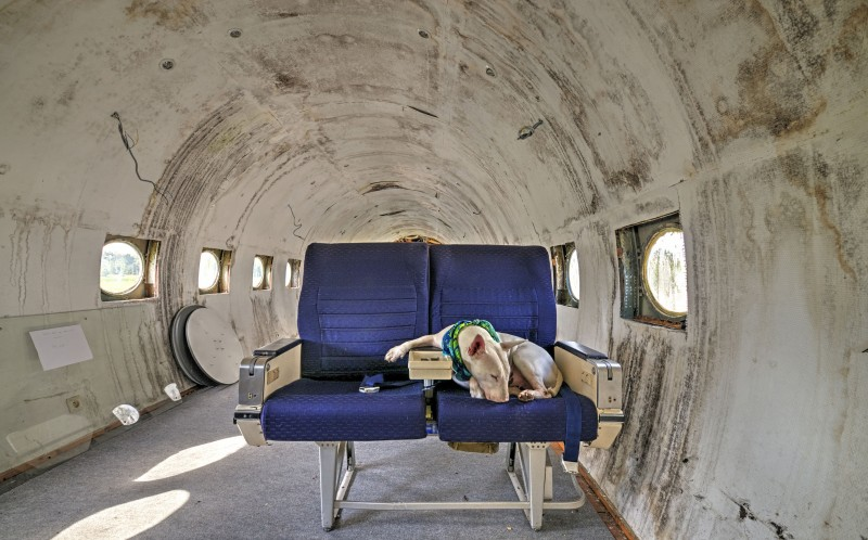 Claire flying in an abandoned airplane in Belgium