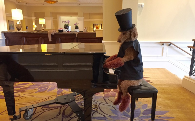 Max playing the piano