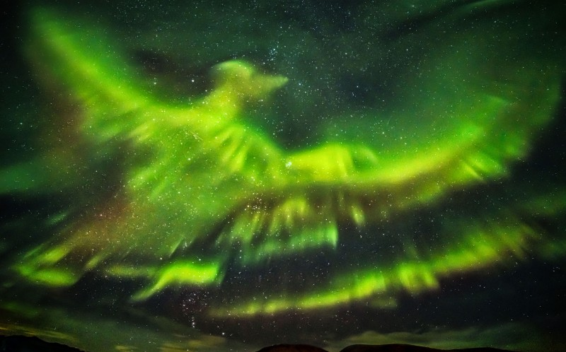 The aurora borealis in the shape of a huge phoenix