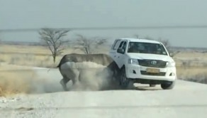 The Rhino going in for its second charge