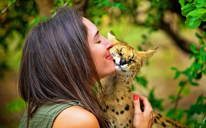 Shannon Benson with an African Wildcat