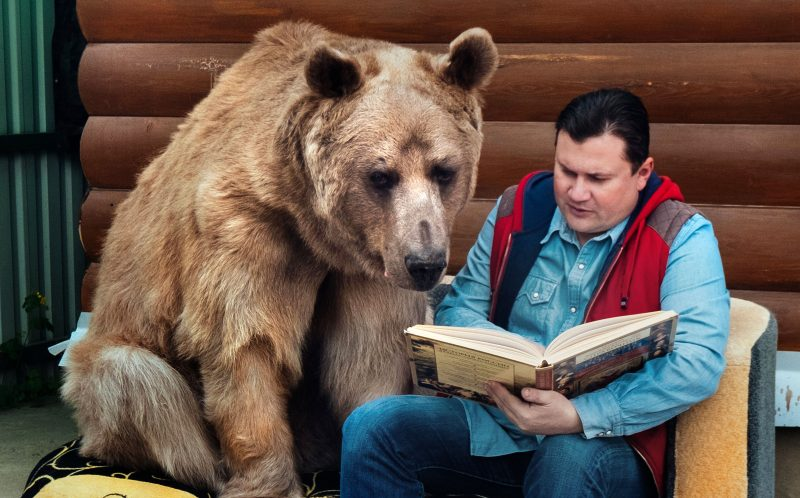 Yuriy Panteleenko reading a book to his pet bear, Stepan.