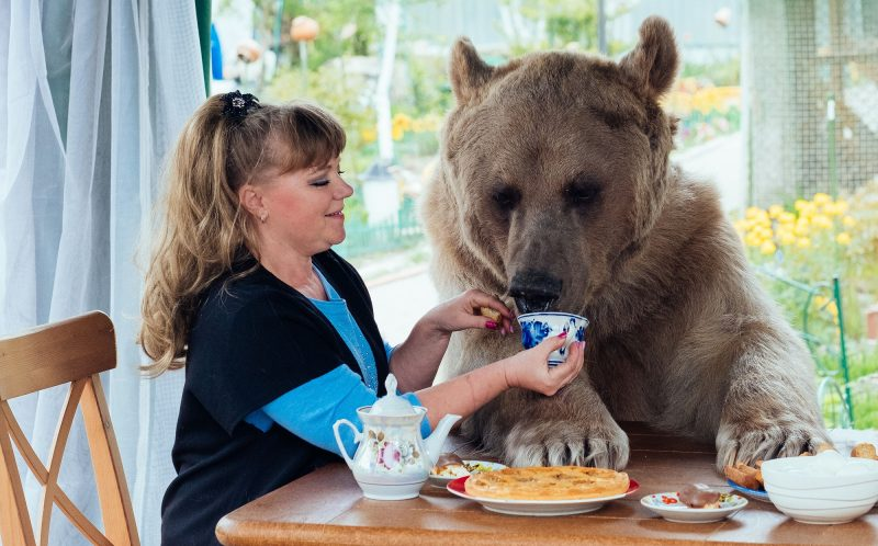 Stepan the bear with Svetlana having a picnic.