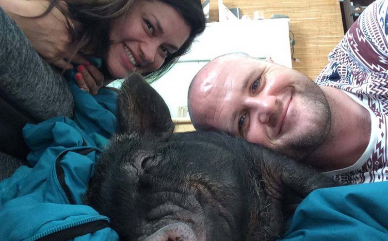 EMMA HITCHCOCK, 32, DANNY BRENNAN, 36, AND LOUIE THE PIG
