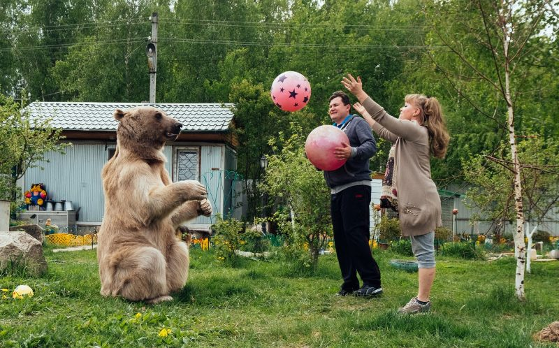 Stepan the bear with Svetlana and Yuriy Panteleenko playing catch.