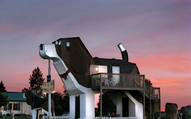 PIC FROM DOG BARK PARK INN / CATERS NEWS - (PICTURED: The Dog Bark Park Inn is in Cottonwood, ID, USA. It was created by couple Frances Conklin and Dennis Sullivan, as a dog themed hotel in the shape of a Beagle for dog lovers. It was opened in 2003. ) - Imaginative architects have taken designs to the next level by building them in the shape of ANIMALS. Keen pet-lovers can visit hotels, churches and museums resembling dogs, cats and even elephants across the globe. The awe-inspiring structures, designed by a variety of animal enthusiasts, can be found in India, Germany and Florida to name a few. SEE CATERS COPY.
