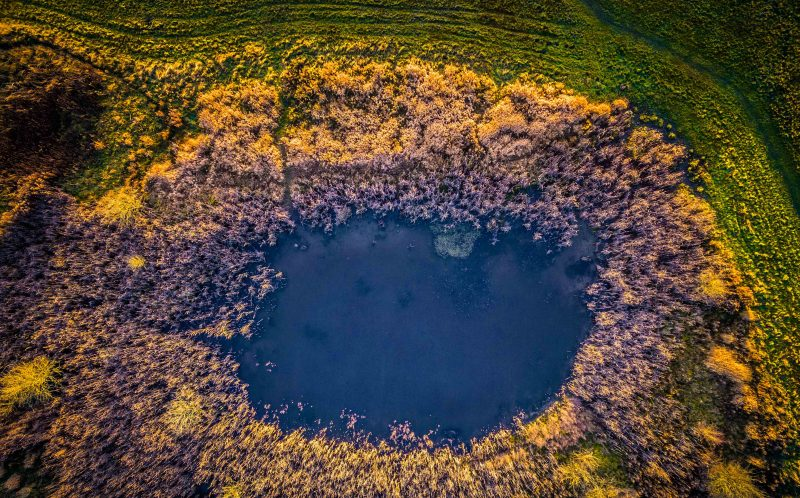 PIC BY MICHAEL RASMUSSEN/CATERS NEWS - (PICTURED: A aerial view of a pond surrounded by trees. ) - These breathtaking pictures show the vast array of colours found all over the world. The stunning photos range from the purple rice fields of China to the beautiful night sky in the Russian countryside. The collection was brought together by a range of photographers who have all captured the images in the last five years. SEE CATERS COPY