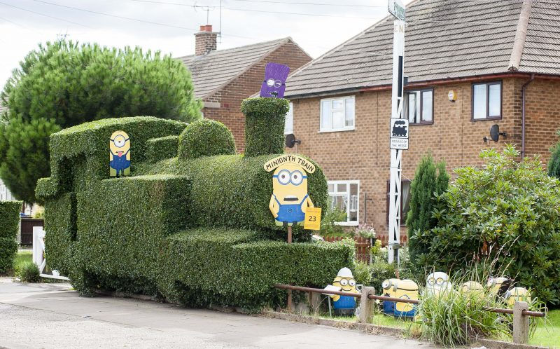 PIC FROM CATERS NEWS - (PICTURED: The Minion Train garden Hedge) - Forget Despicable Methis is DECIDUOUS Me! This minion-themed topiary train is causing a lo-comotion. The off-the-rails hedge design is the one time leaves on the track isnt a problem  and the train-shaped shrubbery has some unusual conductors. Jack Fisher, from Retford, Notts, first started trimming his overgrown bush nearly eight years ago - and since then his tired old hedge has transformed into a blossoming evergreen engine run by a team of MINIONS. The fun-loving 78-year-old cartoon enthusiast came up with the idea of creating the unique hedge after he became hooked on kids favourite Despicable Me. Retired hotel maintenance manager Jack, who has two children and seven grandchildren, said: In the past Ive worked as a cinema projectionist, so Ive got an interest in cartoon right through from Bambi to Wallace and Gromit, as well as the more modern ones. SEE CATERS COPY.