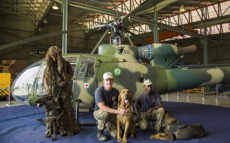 PIC BY Paramount Group Anti-Poaching and K9 Academy/CATERS NEWS - The Ichikowitz Family Foundation will work with Gabons National Parks to establish an anti-poaching rapid response task force which include the donation of a Gazelle helicopter and K9 units.