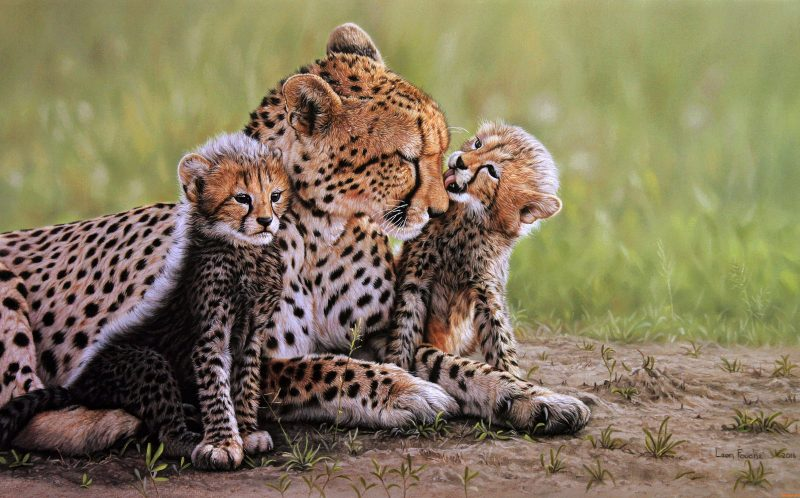 PIC BY LEON FOUCHE / CATERS NEWS -A hyper realistic painting of a mother cheetah and her cubs by Leon Fouche.