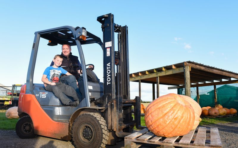 PIC BY MERCURY PRESS - Harry Houghton, 8, with his dad James Houghton, carrying a giant pumpkin through the farm