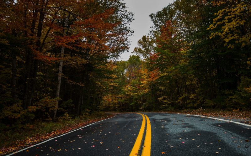 PIC BY JENNIFER KHORDI/ CATERS NEWS - Stunning road view with Autumn colours in Vermont.