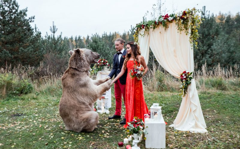 PIC BY OLGA BARANTSEVA / CATERS NEWS - Stepan the bear holds the couples hands during the wedding ceremony.