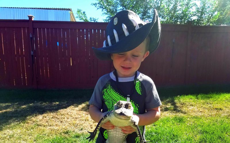 PIC BY JASON MCDONALD/CATERS NEWS - JJ holding a crocodile.